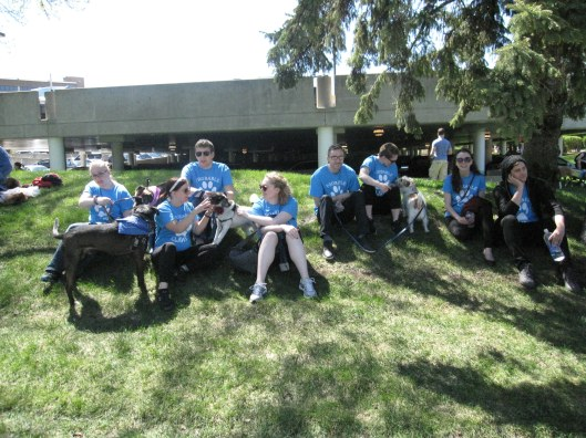 johnson becker walk for animals 2