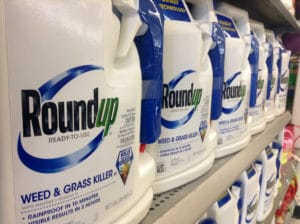 Bottles of Roundup (Glyphosate) on Store Shelf