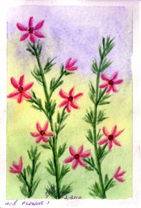 408 FLOWER 1