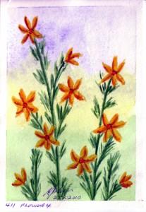 411 FLOWER 4