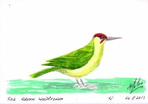 522 GREEN WOODPECKER