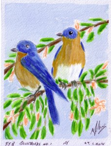 558 BLUEBIRDS NO. 1