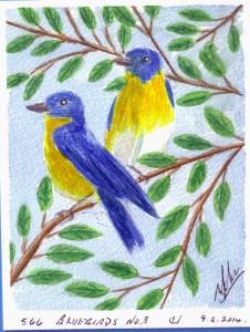 566 BLUEBIRDS NO. 3