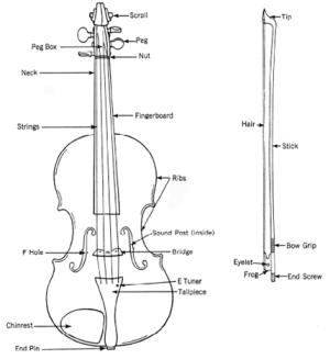 Violin Basics: Choosing and caring for violins | Johnson String