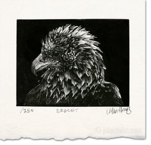 eaglet wood engraving