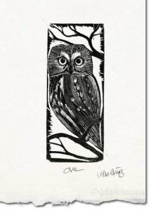 owl wood engraving