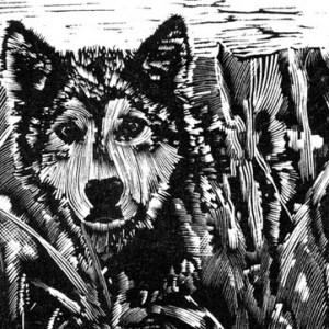 Greg's Dog ~ wood engraving ~ John Steins