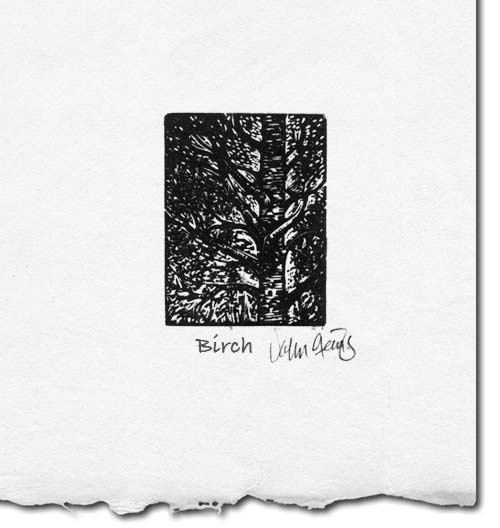 birch wood engraving print