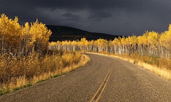 Autumn comes to the Yukon!