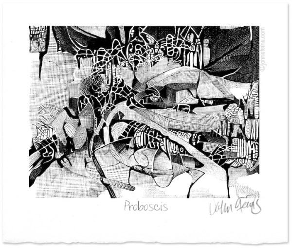 """Proboscis "" Stylus pencil drawing ~ John Steins"