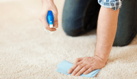 Practices for Removing Carpet Stains and Maintaining Rugs ...