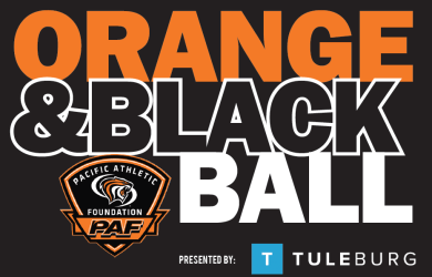 Orange & black ball