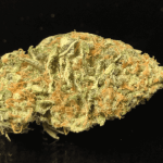 BLUE BULL 23-27% THC - Special Price $115 oz!