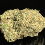 COSMONAUT upto 32% THC - Monday Sale $20 off 1 oz, $10 off 1/2 oz