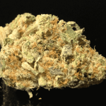 GRAND DADDY PURPLE 22-27% THC - Special Price $135 oz!