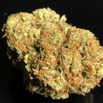 NEW PINK PANTIES THC UP TO 24% - Tuesday $20 off 1oz - $10 off 1/2oz