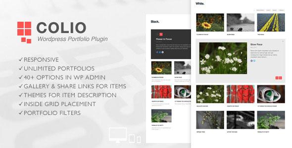 Colio - Responsive Portfolio WordPress Plugin v2.3.4