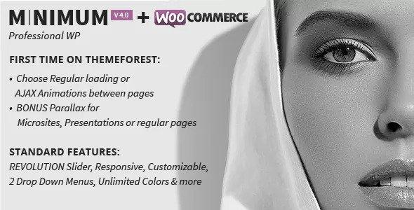 MINIMUM v4.0 - Professional WordPress Theme