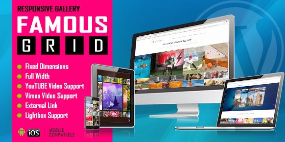 Famous – Responsive Image And Video Grid Gallery WordPress Plugin