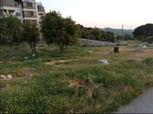 Land for sale in Barouk