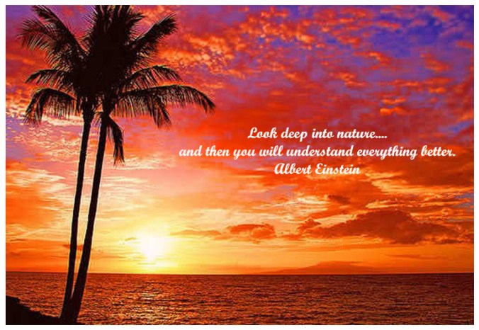 Images Of Nature With Quotes