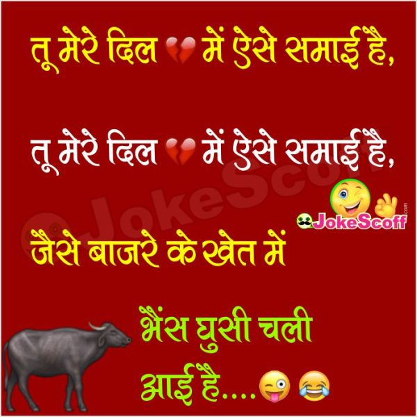 sapna haryanvi jokes