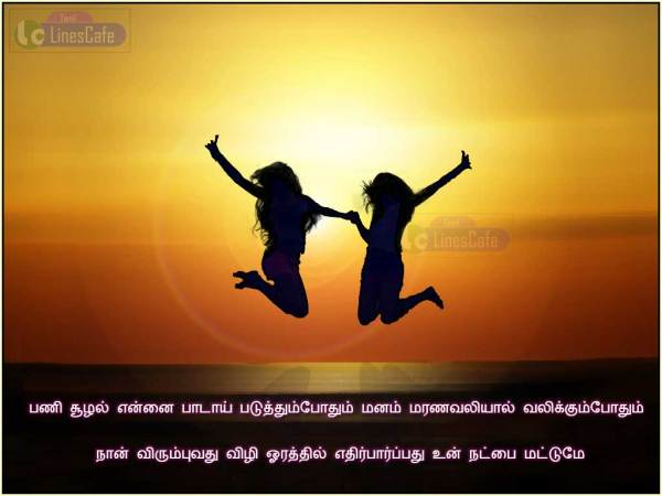 Friendship Quotes In Tamil
