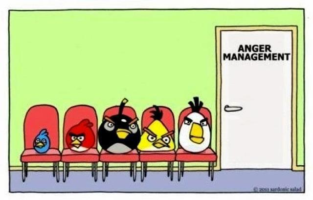 Anger Management for Angry Birds