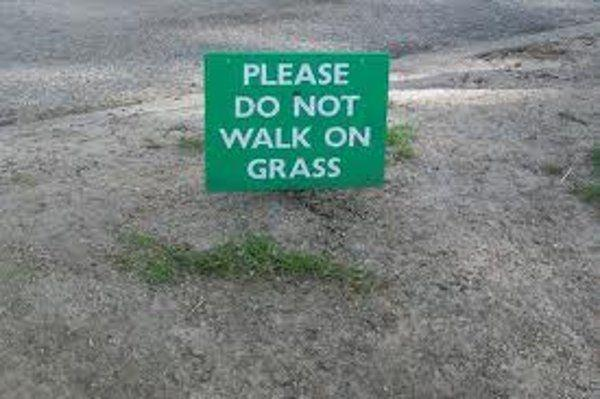 DO not walk on grass - funny pic