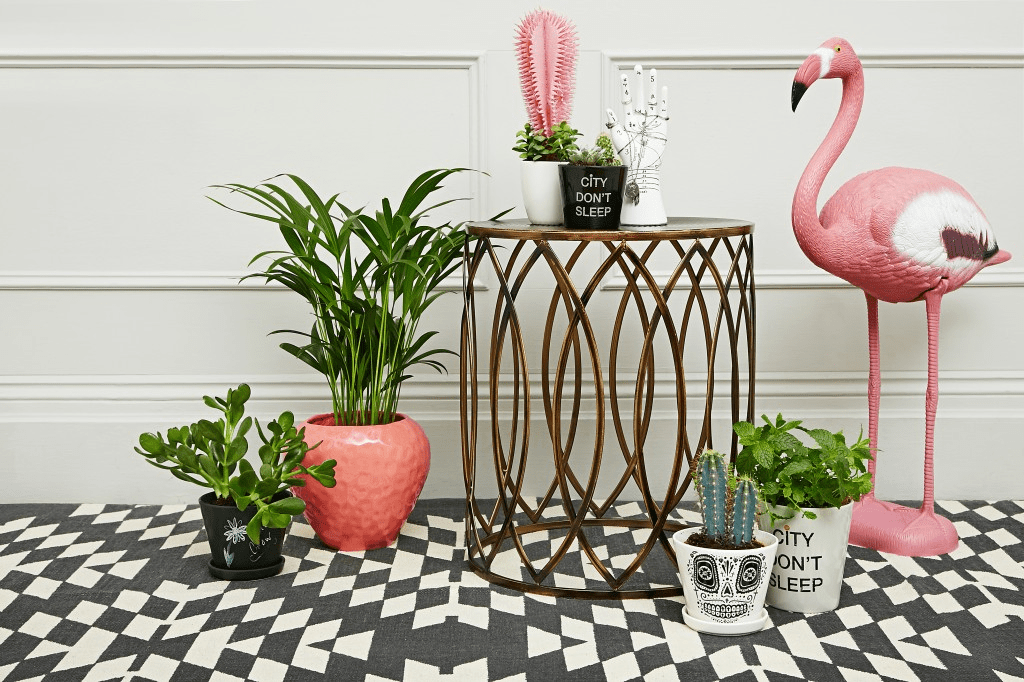 Home Decoration With Plants