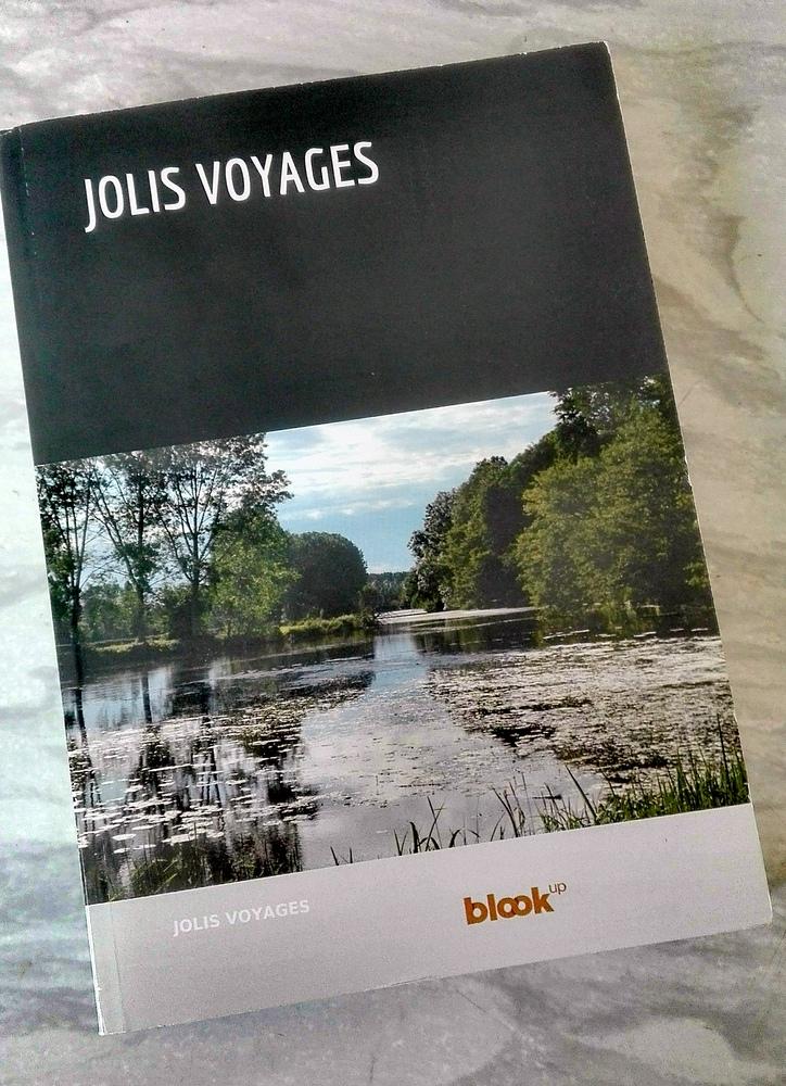 Blook le livre de mon blog