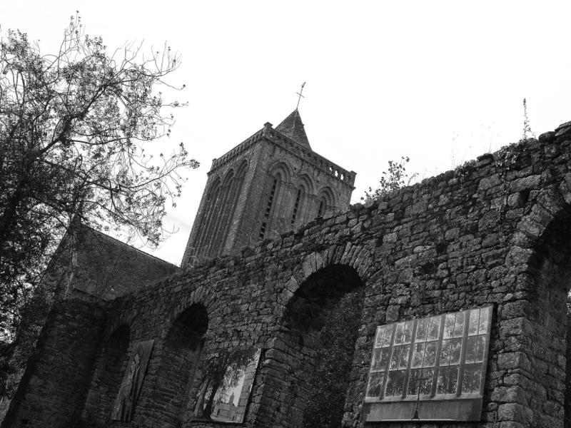 Abbaye de la Lucerne (8)