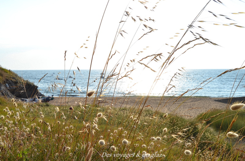 Belle-Île-en-mer en Combi Volkswagen