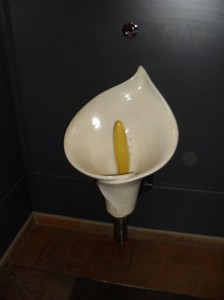 unusual urinal