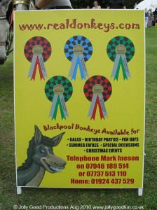Real donkeys For Hire