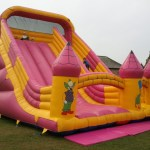 Eyecatching Inflatable Slide