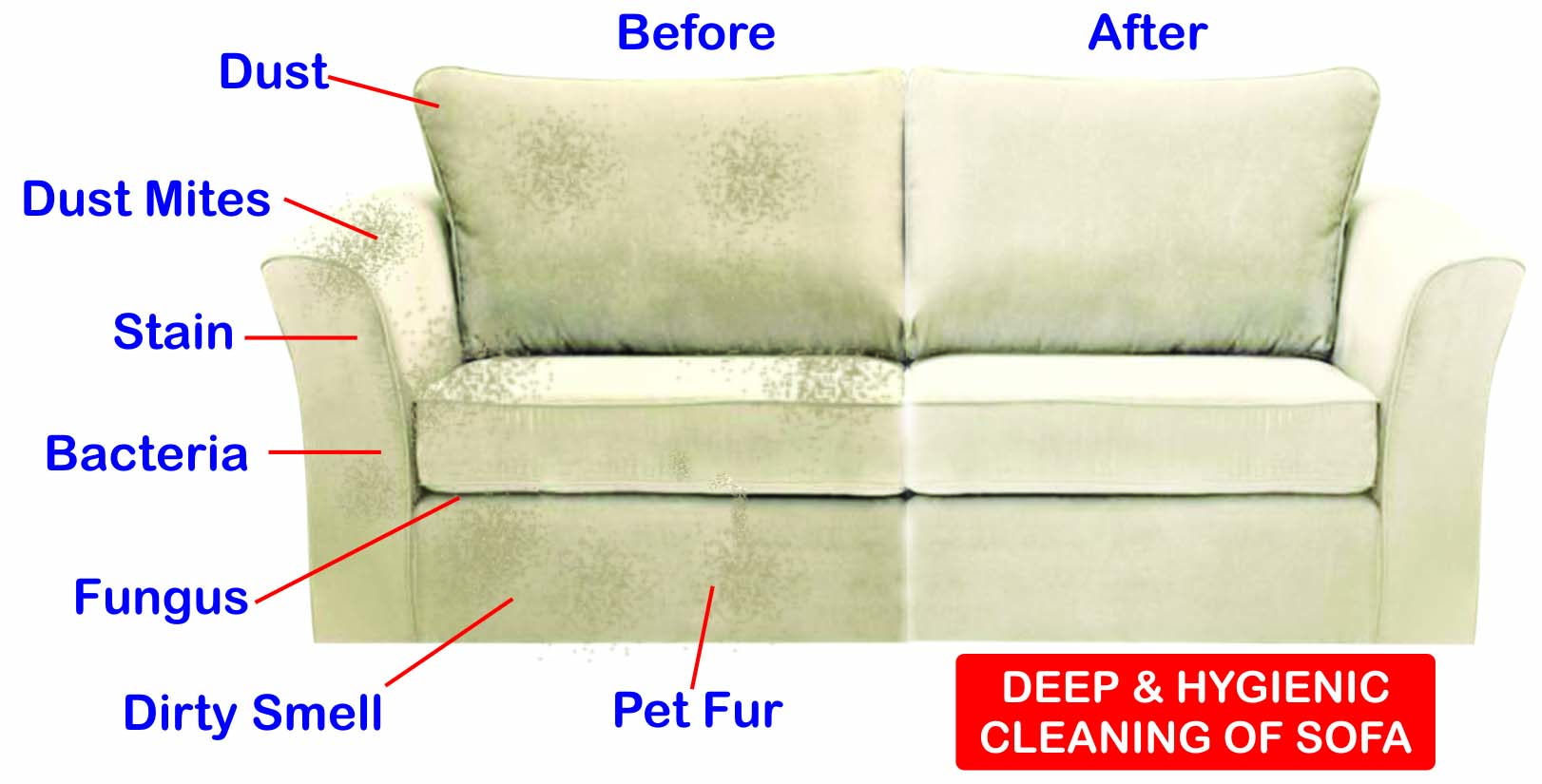 sofa cleaning services bangalore used bed for sale in abu dhabi service brooklyn