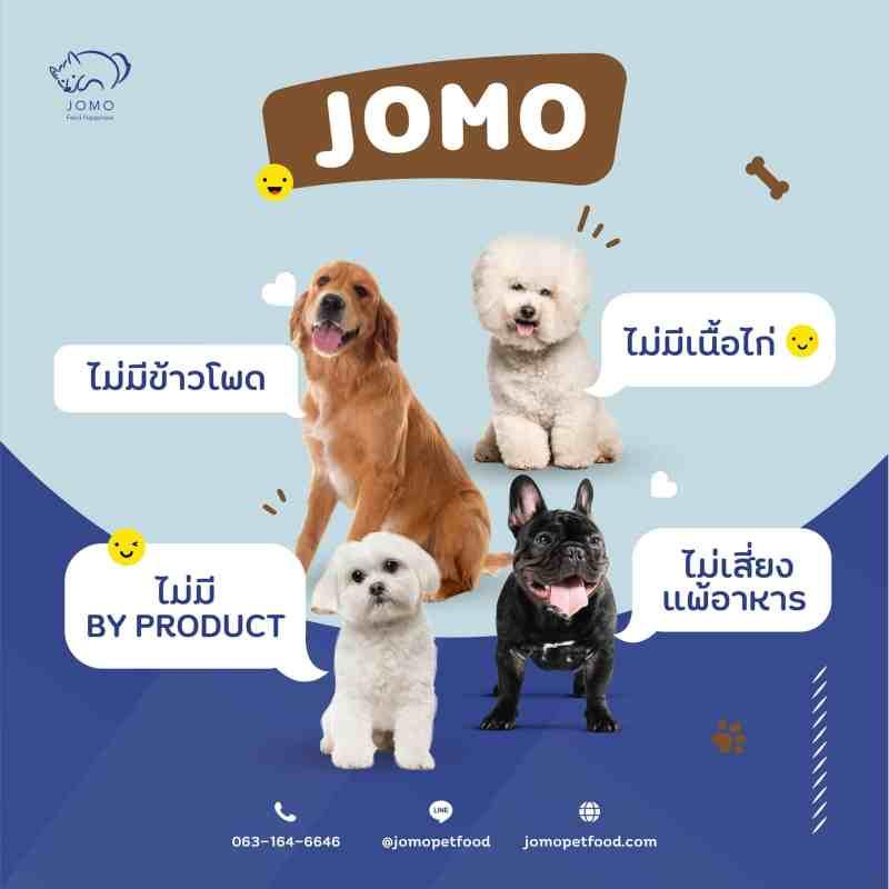 หมาสี่ตัวสี่สายพันธุ์นั่งมองมาที่กล้อง พร้อมกล่องข้อความ อาหารสุนัข JOMO ไม่มี By Product ไม่มีเนื้อไก่และข้าวโพด ไม่เสี่ยงแพ้อาหาร