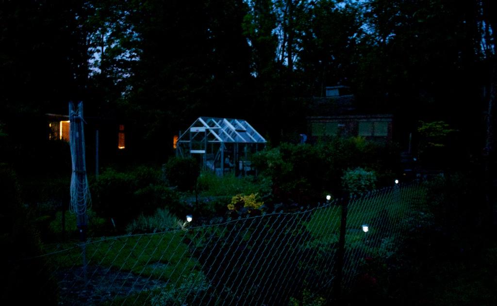 Lights in the Garden Night web 045
