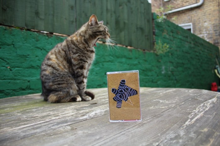Foundling wake up in bits cassette cat