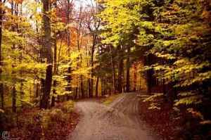 Which Road Should Jonathan Hilton Take