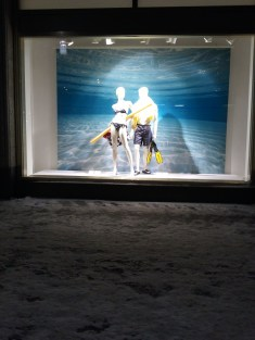 The swimsuit-clad mannequins contrasted quite humorously with the snow all around them. :)