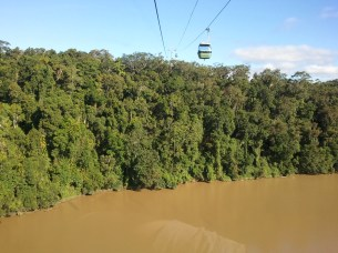 The last portion of the rainforest tour was a 4.7 mile cableway ride back to Cairns, which provided a fascinating aerial perspective to the rainforest I'd seen from the ground.