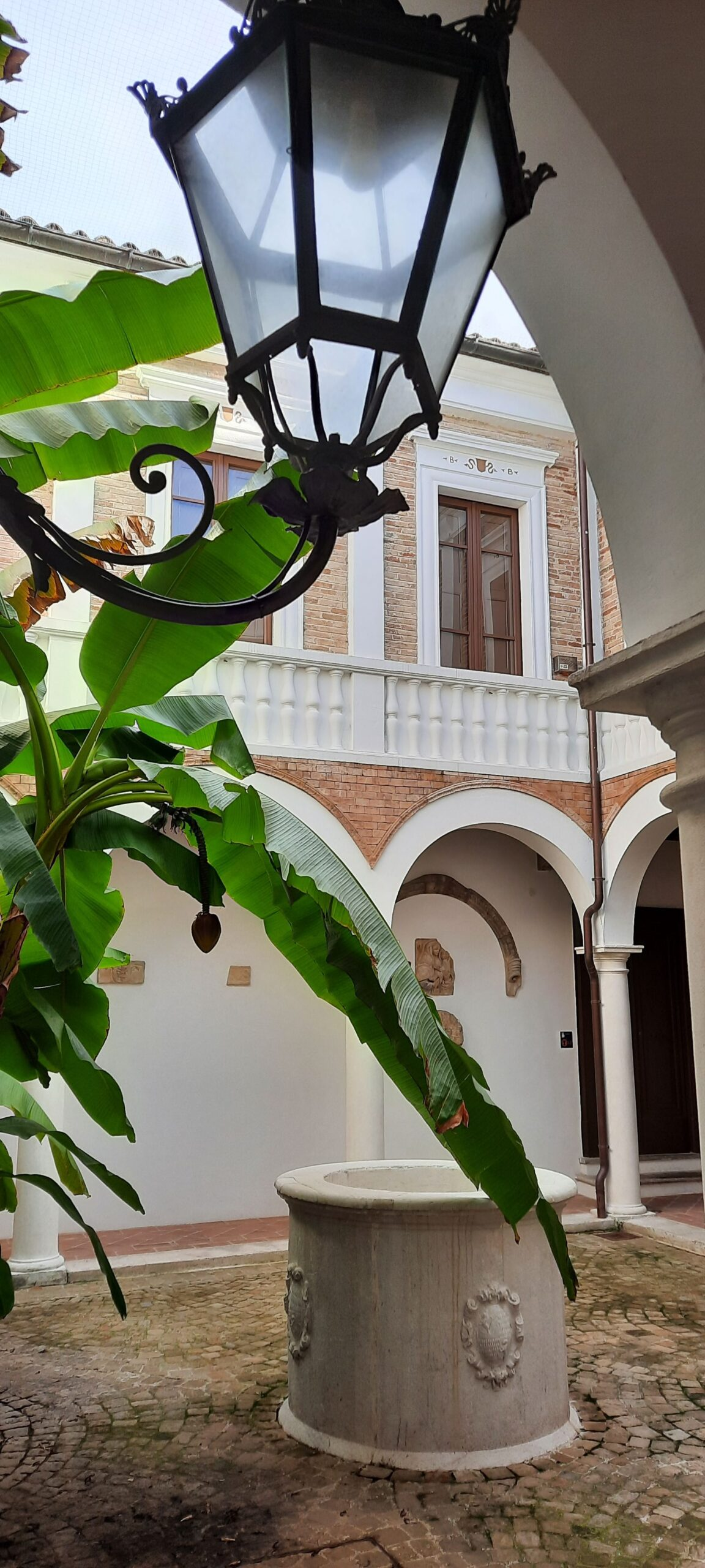 Palazzetto Baviera - cortile interno