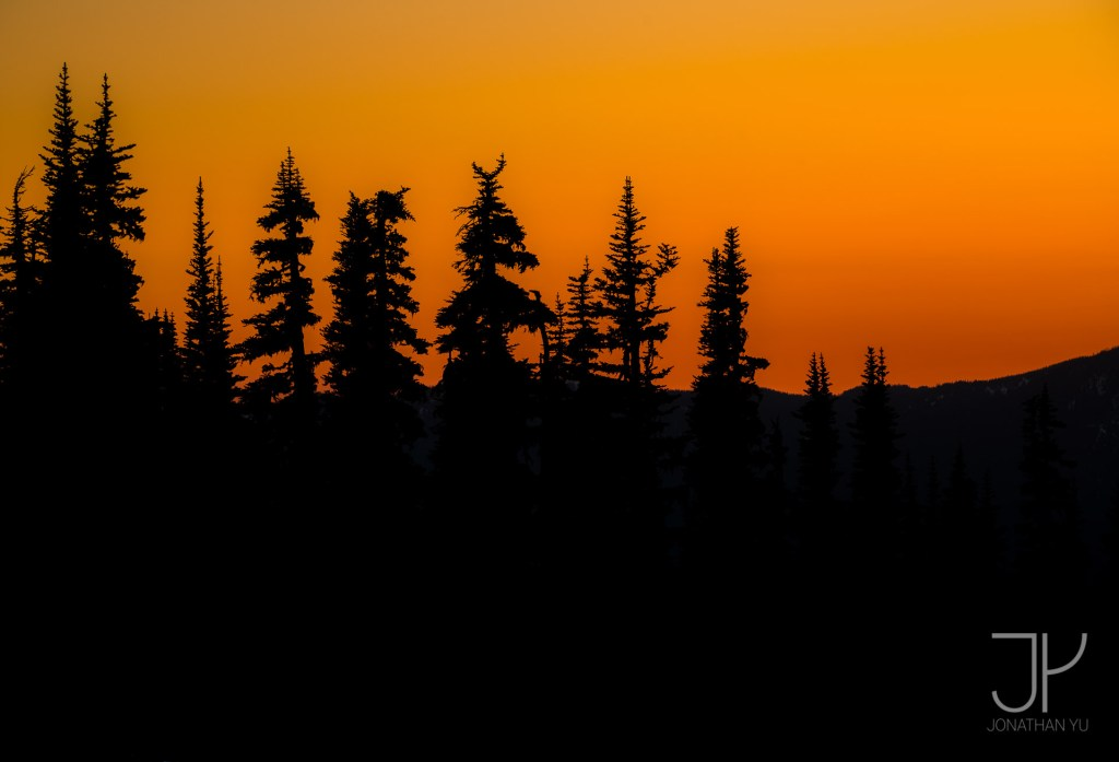 The tallest of the trees poke out above the distant mountains on another summer sunset