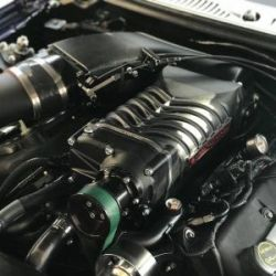 2003-2004 Ford Mustang Cobra 4.6L