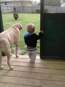 A boy and his dog - best friends