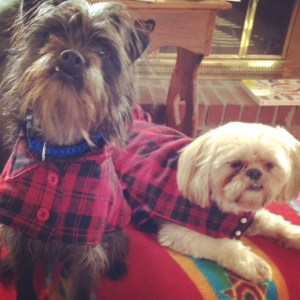 Matching lumberjack jackets for first day of fall