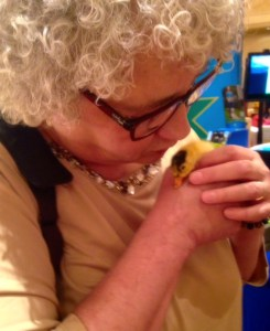 In love with a duckling
