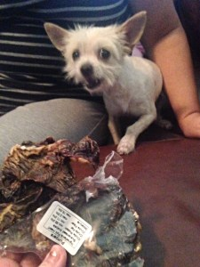 Tiny dog can handle this pig heart from Jones